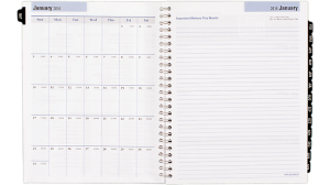 AT-A-GLANCE® 2016 DayMinder® Weekly/Monthly Refill for G545 (G54550_16)